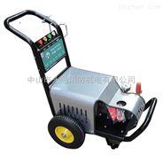 380V工业清洗机熊猫清洗设备冷水洗车机