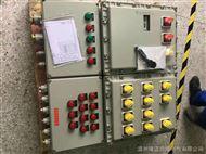 防爆检修插座箱(带漏电保护开关)