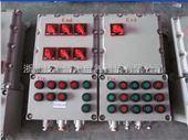 BXD53防爆动力配电箱
