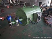 DQDS-300-全自动大流量刷式自清洗过滤器