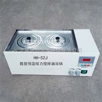 中西廠家恒溫磁力攪拌油浴鍋庫號:M313898