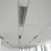 广州CBD吊顶长条形矿棉吸音板厂家定制