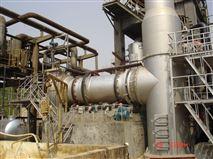 小型回转窑焚烧炉(50~500kg/h危险固废)