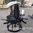 污水曝气机QXB系列在水处理中的运用