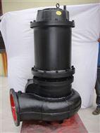 WQS型双吸式潜水电泵