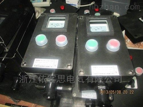 A2B1两钮一表黑色全塑三防现场操作柱