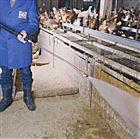 FS18/28猪场智能高压清洗机