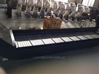 ZDLB系列A型链板排屑机