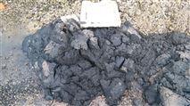 印染污泥处理设备