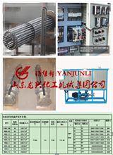 山东龙兴电加热导热油炉制造商