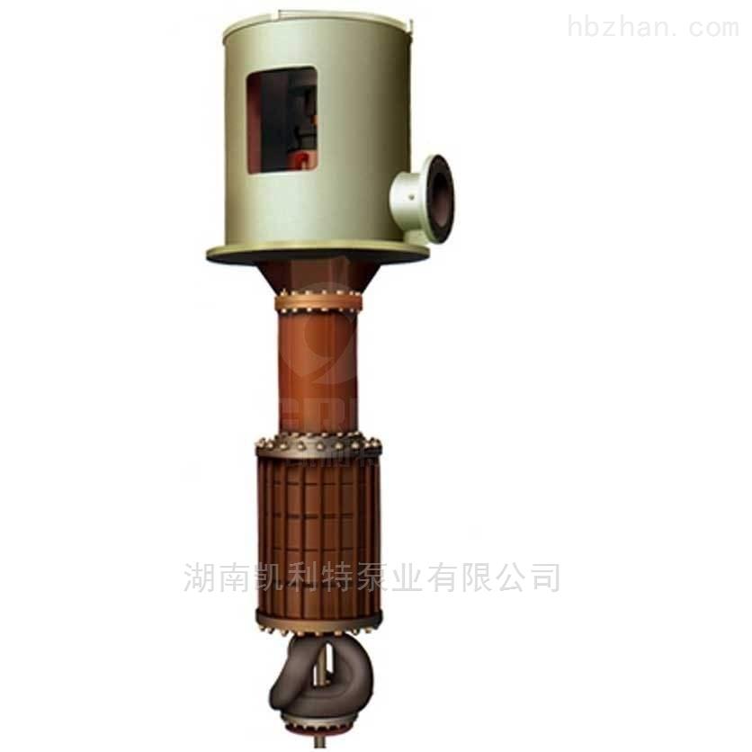 立式多级筒袋式离心泵设备