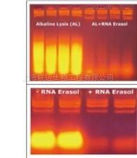 非酶RNA清除剂1.0