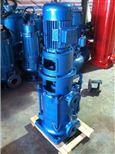 25LG(R)3-10永嘉良邦25LG(R)3-10型立式多级泵