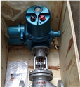 铸钢电动法兰截止阀 J941H-100C DN125