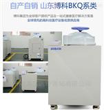 山东博科立式压力蒸汽灭菌器生产厂家