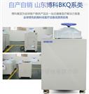 內循環蒸汽消毒鍋規格