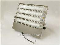 飞利浦LED投光灯BVP163 220W室外高杆灯