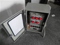 BXM51-12K防爆照明配电箱*
