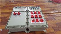 BXM51加油站控制照明防爆配电箱