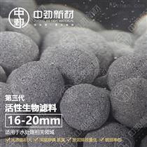 中劲活性生物滤料 水处理 环保新陶粒