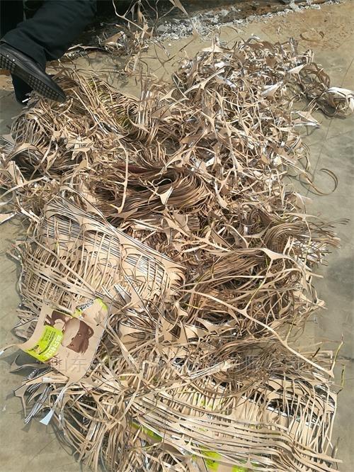 废旧塑料的处理-纸塑分离设备