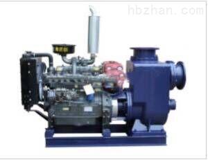 柴油机式双吸自吸泵
