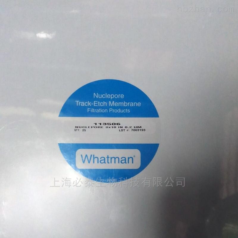 whatman方形径迹蚀刻膜聚碳酸酯膜PC膜