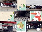 杭州大型医院污水处理设备生产厂家价格报价