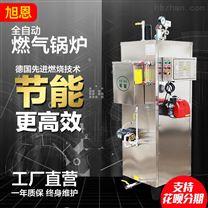 蒸汽发生器商用电加热工业全自动小型