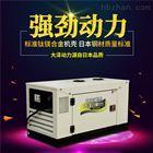 TO18000ETX大澤動力15kw靜音柴油發電機