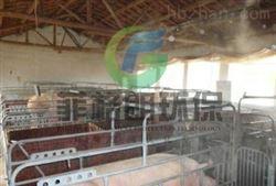 养殖场微雾消毒高压喷雾除臭设备