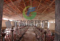 广州专业喷雾降温系统制造商