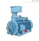 -瑞士ABB高压防爆电机的调试说明