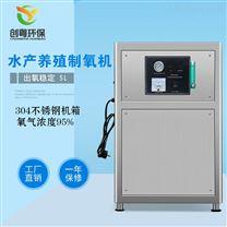 创粤5L工业制氧机 氧气发生器
