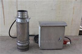 便携圆桶式潜水斜流泵设备