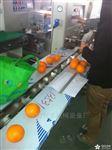 KL-350X桂林沃柑打包机
