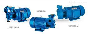 W型单级直连旋涡泵