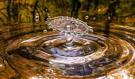 全文发布|山东省水污染防治条例