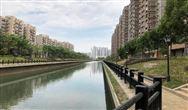 武漢市:多策并用,黑臭水體變身生態綠廊