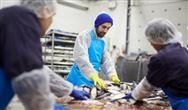 科学家能从海鲜加工厂废水中提取大量营养物质