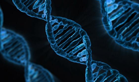 生物膜法概述:一文带你真正看懂生物膜