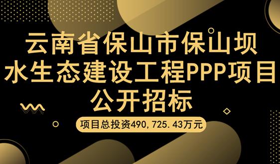 49亿,云南保山市保山坝水生态建设项目公开招标