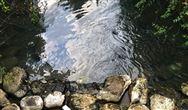 湖北《关于进一步加强城镇水环境治理工作的通知》