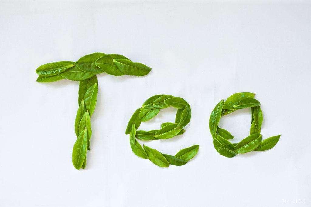 三片茶叶矢量图