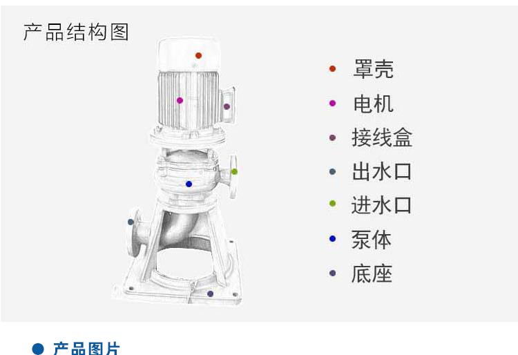 LW排污泵结构图