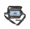 美国IQ350美国氢气检测仪IQ350型